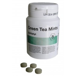 GREEN TEA MINTS:  Enjoy  green tea totum