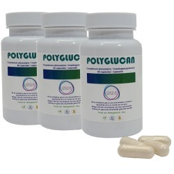 1.3 beta glucans support the immune system by stimulating macrophages